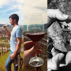 Wein, Wandern & Verkosten